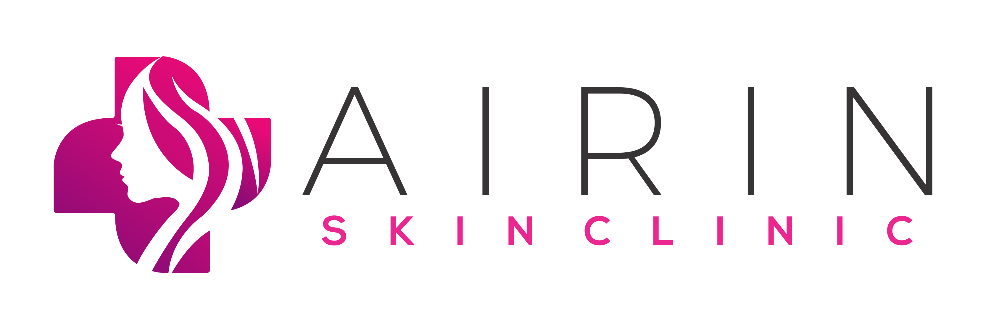 logo master airin